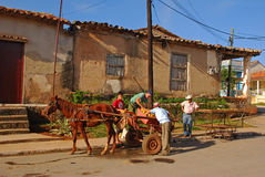 Cuban farmers moving farm harvest from horse cart to mobile stall cart Royalty Free Stock Photo