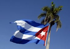 Cuban flag. Waving in palm Royalty Free Stock Photography