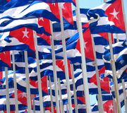 Cuban flags. Dozens of Cuban flags in the wind Royalty Free Stock Image