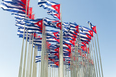 Cuban flags. Group of cuban flags in the wind Stock Images