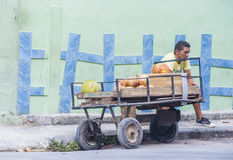 A Cuban fruits seller Royalty Free Stock Photography