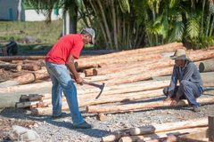 Cuban men chopping logs stock photography