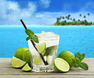 Cuban mojito. Mojito cocktail and fresh ingredients in a tropical landscape stock photos