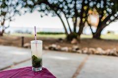 Cuban Mojito Cocktail In Havana stock photos