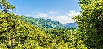 Cuban Natural Landscape Stock Photos