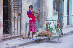 A Cuban onion seller Stock Image
