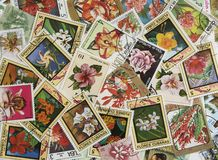 Cuban stamps. With diffrent flowers Royalty Free Stock Photos
