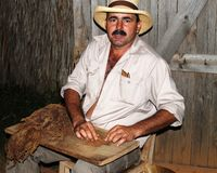Cuban tobacco grower. Show making of cigars before their drying barn Royalty Free Stock Photography