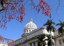 Cubano Capitoleum Imagens de Stock Royalty Free