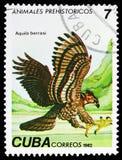 Cubano Fossile Eagle (borrasi) de Aquila, serie pré-histórico dos animais, cerca de 1982 ilustração royalty free