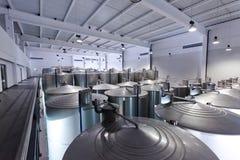 Cubas del acero inoxidable para el vino de la fermentación Foto de archivo libre de regalías