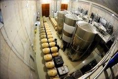 Industria vitivinícola Foto de archivo libre de regalías