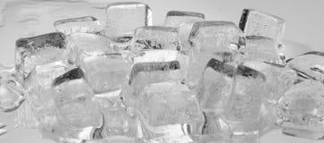 cube льдед Стоковое Фото
