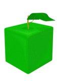Cube apple Royalty Free Stock Photos