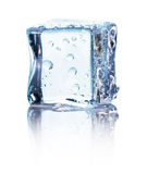Cube of blue ice isolated on a white background Stock Photos
