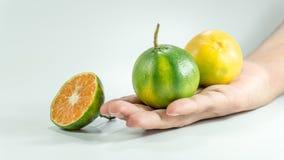 Cube découpé en tranches de mandarine fraîche et d'une mandarine en main image stock