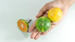 Cube découpé en tranches de mandarine fraîche et d'une mandarine en main Image libre de droits