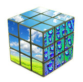 Cube en nature Photos libres de droits