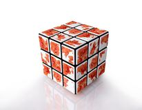 Cube with Flower Pattern on Reflective Surface Royalty Free Stock Photo