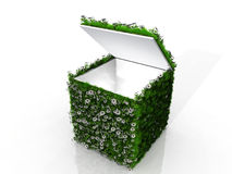 Cube with grass and flowers. Open cube with grass and flowers Stock Photo