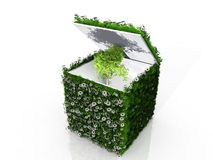 Cube with grass and tree Stock Photography