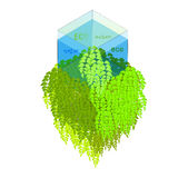 Cube with greenery Royalty Free Stock Photo