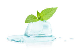 Cube of ice and leaf mint Stock Image