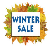 Cube with lot autumn leaf around and word Winter Sale isolated Royalty Free Stock Images