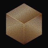 Cube Maze Royalty Free Stock Photo