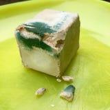 Cube o fermento com molde em uma placa amarela Imagem de Stock
