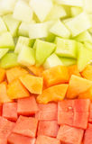 Cube Sized Melons, Honeydew II stock image