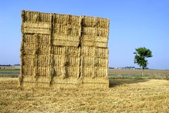 Cube of straw Stock Photos