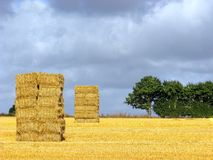 Cube of straw Royalty Free Stock Images