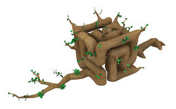 Cube Twisted Plant Royalty Free Stock Image