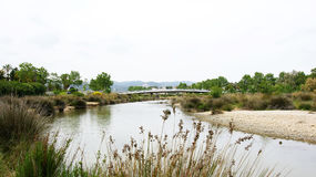 Cubelles-Fluss-Park, Foix-Fluss Lizenzfreie Stockfotos