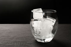 cubes стеклянный льдед Стоковая Фотография RF