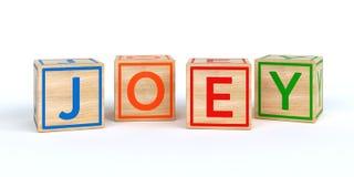 Cubes en bois d'isolement en jouet avec des lettres avec le joey de nom Photos libres de droits