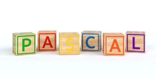 Cubes en bois d'isolement en jouet avec des lettres avec le Pascal de nom Images libres de droits