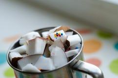 Cubes en noix de coco dans une cuvette Photographie stock libre de droits