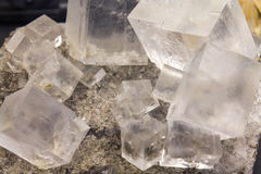 Cubes of Halite mineral. Detail of cubes of Halite mineral stock photo
