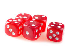 Cubes for poker Royalty Free Stock Image