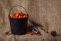 Cubeta brilhante metálica preta com as vagens minúsculas da abóbora do putka Fotografia de Stock