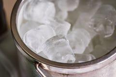 Cubeta com cubos de gelo Foto de Stock