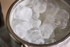 Cubeta com cubos de gelo Imagem de Stock Royalty Free