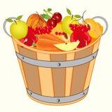 Cubeta com fruto e baga Fotografia de Stock