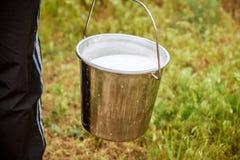 Cubeta com leite Imagem de Stock Royalty Free