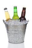 Cubeta da cerveja com três cervejas Foto de Stock Royalty Free