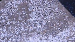 Cubeta da colher da máquina escavadora as rochas vídeos de arquivo