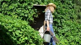 Cubeta da vassoura do jardineiro filme