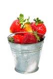 Cubeta das morangos completamente, Foto de Stock Royalty Free